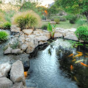 Riven Rock pond